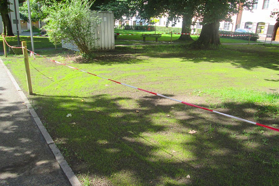 Rasenarbeiten von Kutter Gartengestaltung in Memmingen