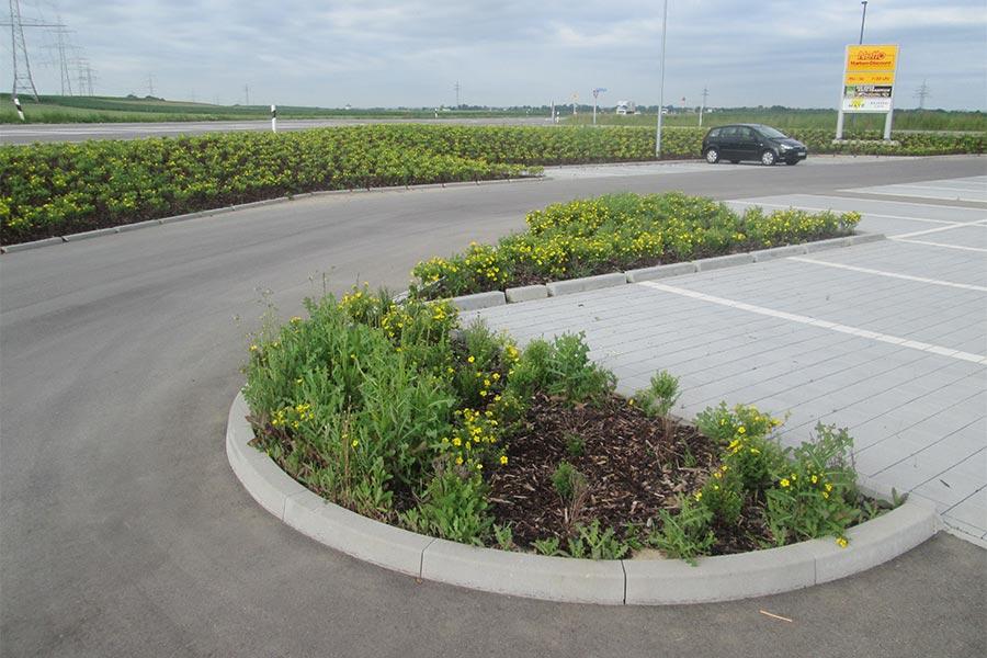 Pflanz- und Pflegearbeiten mit Kutter Gartengestaltung